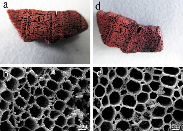 Химики изобрели супергидрофобную медь