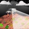 Светящиеся бактерии обнаруживают закопанные мины